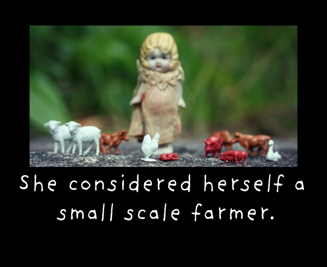 Small Scale.