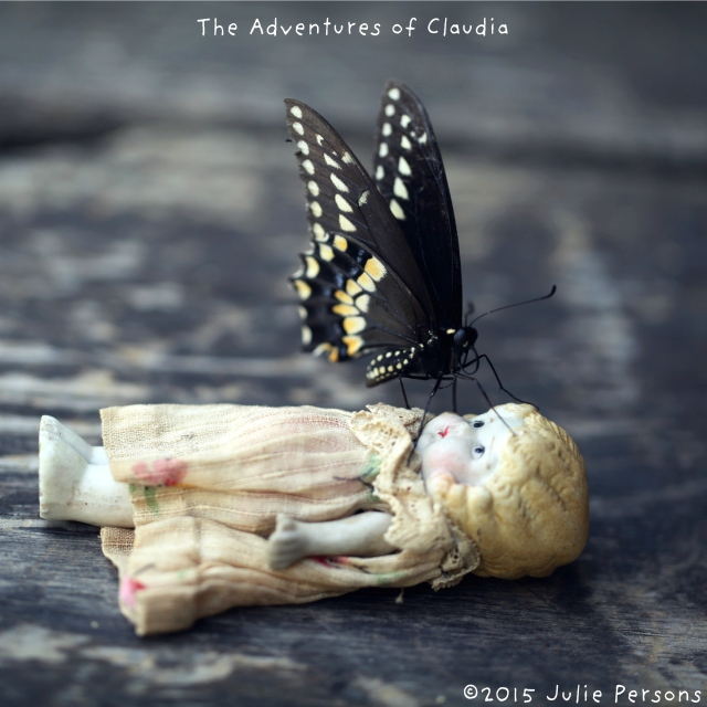 Claudia Black Swallowtail instagram
