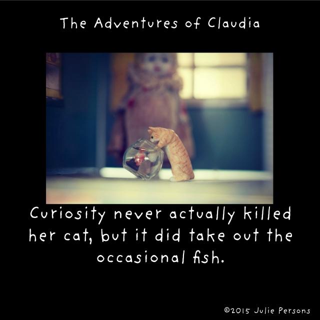 curiosity cat fish instagram